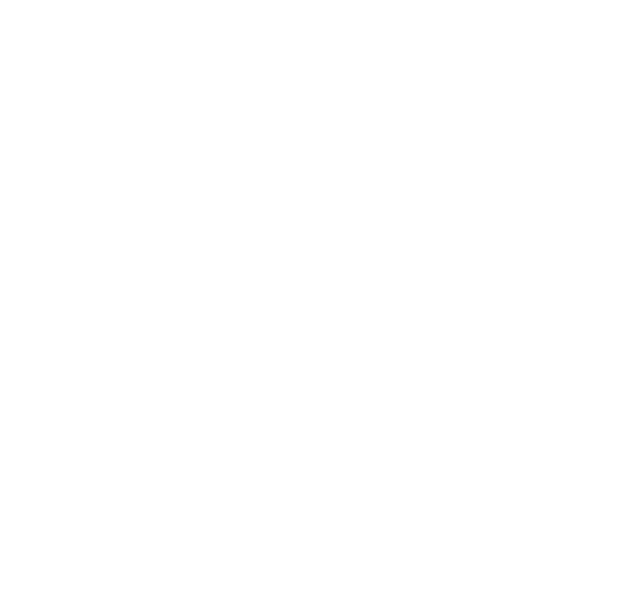 Audioguide 21
